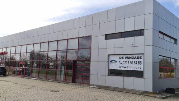 afaceri comerciale)